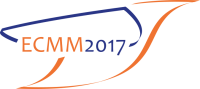 27 - 31 August 2017/ European Conference on Molecular Magnetism 2017